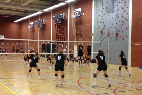 Volleybal dames 1